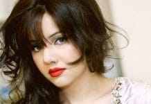 Rabi Pirzada Decides to Leave Pakistan and Appreciated Adnan Sami for his Decision